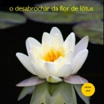 O Desabrochar da Flor de Lótus